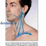 خطرات درد دندان و عفونت چیست ؟